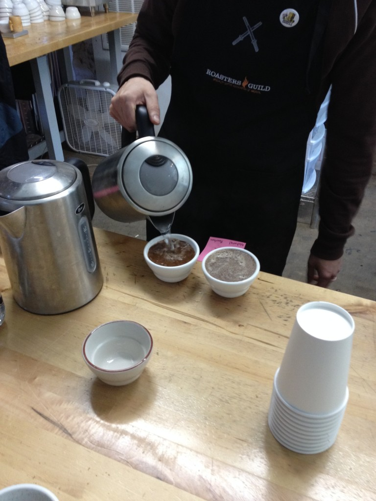 Getting the coffee ready for cupping